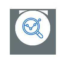 06. icone falcon